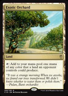 Exotic Orchard